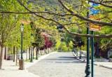 Κεντρική οδός